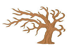 Old brown tree - vector Royalty Free Stock Photos