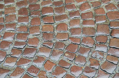 Old brown wet cobbles Stock Images