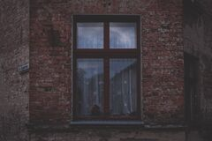 Old brown window Stock Image