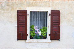 Old brown window with flowers, Dalmatia, Croatia Stock Image