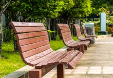 Old benches in public park. stock photo