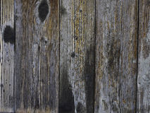 Old brown wood fence background texture. Close up on an old brown wood fence background texture Royalty Free Stock Photo
