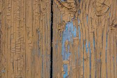 Old brown wooden door with old rusty nails and peeling paint background royalty free stock photos