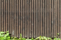 Old brown wooden fence with green grass Stock Image