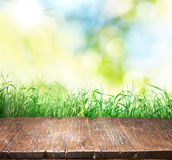 Old brown wooden floor with green grass on the edge. Nature background Stock Photo