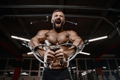 Old brutal strong bodybuilder athletic men pumping up muscles wi Stock Images