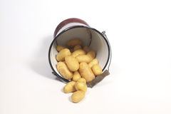 Old bucket overflowing with potatoes Stock Photo