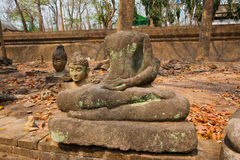 The old Buddha statue and moss at Tunnel Temple (Wat U-mong) Stock Photo