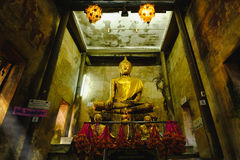 Old Buddha statues in the old church,covered with trees roots with lighting effect. Stock Image