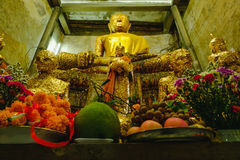 Old Buddha statues in the old church,covered with trees roots with lighting effect. Royalty Free Stock Photos