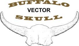 Old Buffalo Skull Stock Photo