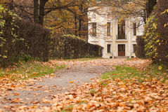 Old building in the autumn park Stock Image