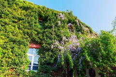 Old building in Bedburg Alt-Kaster, Germany Stock Image
