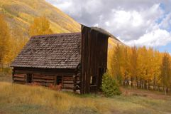 Old building with changing aspens stock photo
