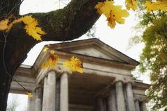 Old building exterior architecture outdoors maple tree leaves yellow color. Building architecture tree maple leaves autumn nature garden park Stock Photography