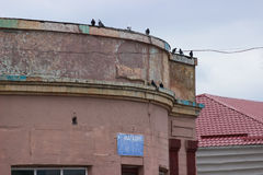Old building facade with pigeons Stock Photo