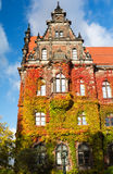 Old building of National Museum with autumn ivy in Wroclaw, Poland Royalty Free Stock Image