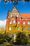 Old building of National Museum with autumn ivy in Wroclaw, Poland Royalty Free Stock Photos