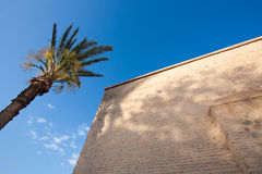 Old building and palm tree. Against the blue sky royalty free stock images