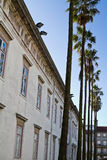 Old building with palm trees in front Stock Photo