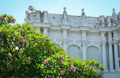 Old building with plumeria flowers in Penang, Malaysia Stock Photos