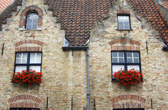 Old building with red flowers in windows Royalty Free Stock Photography