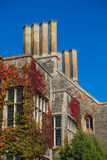 Old building with red ivy. Detail of an old building with red ivy, chimneys, bright blue sky, copy space Royalty Free Stock Images