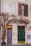 Old building with tree. In Rome, Italy royalty free stock photos
