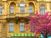 Old building in Vienna city Royalty Free Stock Image
