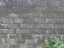 Old building wall background texture Stock Photo
