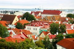 Old buildings with bright roofs in Tallinn, Estonia royalty free stock photography