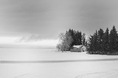 Old buildings in rural landscape. Old buildings in spruce trees in winter in black and white Royalty Free Stock Photos
