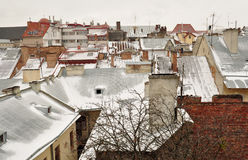 Old buildings and snow-covered roofs of the downtown in Lviv, Ukraine. Stock Photos