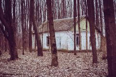 Old buildings in the woods royalty free stock image