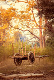 Old bullock cart in the countryside Royalty Free Stock Images