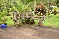 Old bullock cart. An historical conveyance decorating an hotel grounds here in Siem Reap, Cambodia stock photography