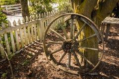 Old bullock cart wheel Royalty Free Stock Image