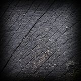 Old burned tree trunk. Textured cut surface Royalty Free Stock Photos