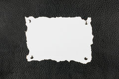 Old burnt paper pinned  buttons to black leather Royalty Free Stock Photo