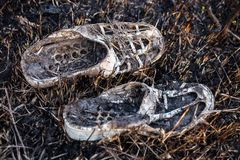 Old burnt shoes on the burnt grass Stock Image