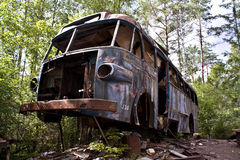Old bus wreck in the forest Royalty Free Stock Image