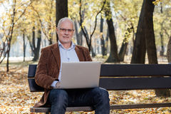 Old businessmen working at laptop outside on a bench Royalty Free Stock Image