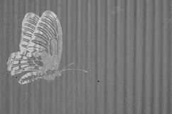 Old butterfly image with zinc texture Stock Photo