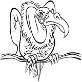 Old Buzzard. An image representing an old buzzard (aka old person Royalty Free Stock Photo