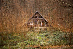 Old cabin. Old abandoned cabin in the woods Royalty Free Stock Photography