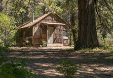 Old cabin in the forest. Old cabin in a Northern California forest Stock Photo