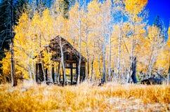 Old cabin. An old rundown log cabin near Lake Tahoe Stock Photo