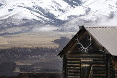 Old Cabin with Snow Mountains and Elk Antlers Stock Photo