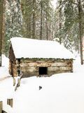Old Cabin in the Woods. The Lost Cabin in the woods at Sequoia National Forest in California stock images