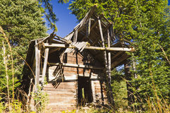Old cabin in the woods Stock Image